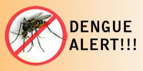 dengue_alert-e1352089990406