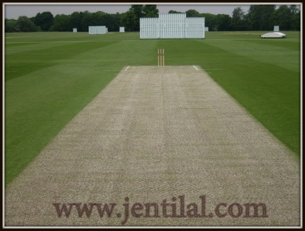 Cricket-Pitch-Ten-Weird-Units-of-Measurements-601